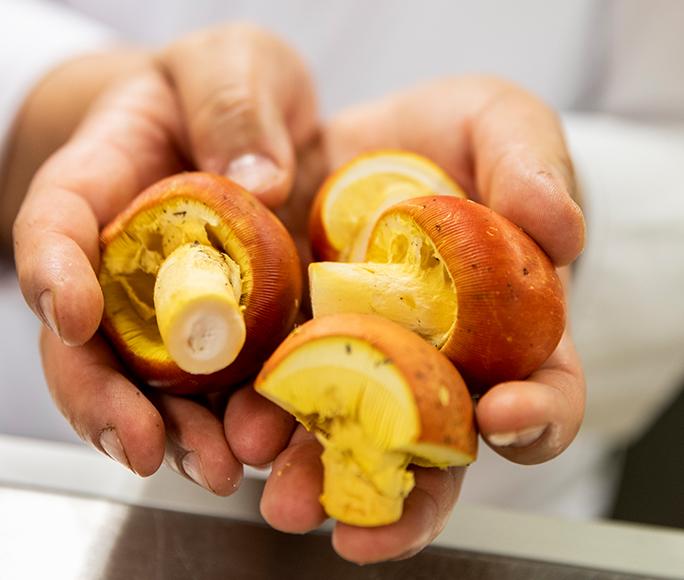 Kirta — Kirchweihküche um Kürbis und Ente